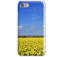 Daffodil fields in Hampshire, England iPhone Case/Skin