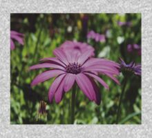 Side View Of A Purple Osteospermum With Garden Background One Piece - Long Sleeve