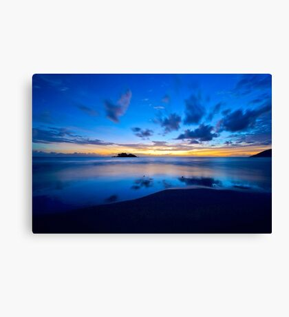 Early morning Daintree coast Canvas Print