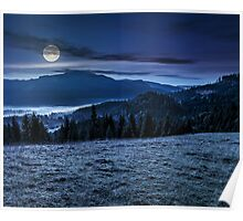 spruce forest in foggy Romanian mountains Poster