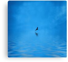 Blue Water Flying Canvas Print