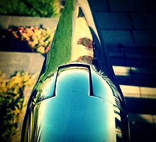 Handrail reflections by Janine Barr