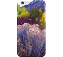 Bold and Bright Earthtones iPhone Case/Skin
