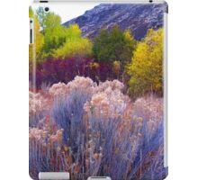 Bold and Bright Earthtones iPad Case/Skin