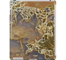 Thunder Egg Chalcedony and Pyroxene iPad Case/Skin