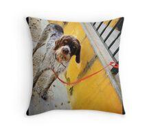 El Perro en Espana Throw Pillow