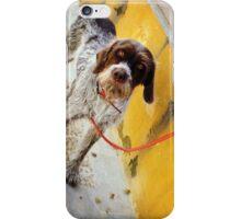 El Perro en Espana iPhone Case/Skin