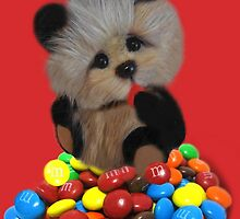 THE THINGS THAT MAKE U GO MM-BEAR EATING M&M's PICTURE/CARD/POSTER ..ECT. by ╰⊰✿ℒᵒᶹᵉ Bonita✿⊱╮ Lalonde✿⊱╮