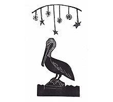 Night Watch Pelican Photographic Print