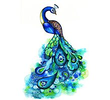 Peacock Watercolor Photographic Print