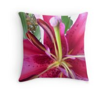 Pink Lily in Macro - Spring, Oct. 2010,  Throw Pillow