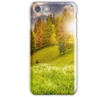 forest on hillside meadow in mountain at sunset iPhone Case/Skin