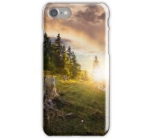 stump in front of fir forest on hillside at sunset iPhone Case/Skin