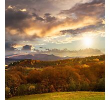 mixed forest near valley in mountains  on hillside at sunset Photographic Print