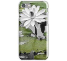 Lily Pad 1  iPhone Case/Skin