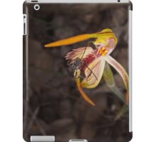 insect on clubbed spider orchid iPad Case/Skin