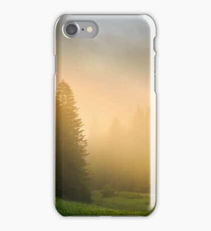 sun rays breaking through the clouds and fog in forests iPhone Case/Skin