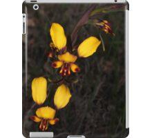 donkey orchids  iPad Case/Skin