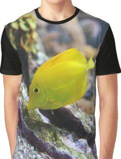 Yellow Fish Graphic T-Shirt