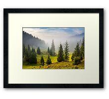 fir trees on meadow between hillsides in fog before sunrise Framed Print