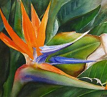 Bird of Paradise  by Karin Zeller