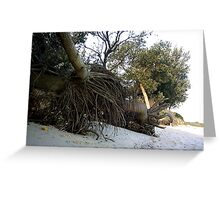 crazy roots Greeting Card