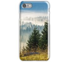 coniferous forest in foggy Romanian mountains iPhone Case/Skin