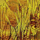 Reeds by the stream by George Hunter