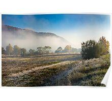 morning fog among trees Poster
