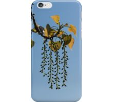 Springtime Jewelry iPhone Case/Skin