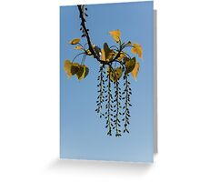 Springtime Jewelry Greeting Card