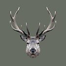 The Stag by petegrev