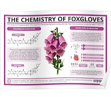 The Chemistry of Foxgloves Poster