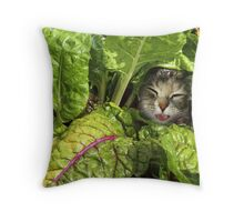 Green is good for the eyes... well, have you ever seen a Rabbit with Glasses? Throw Pillow