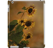 A History Of Sunflowers iPad Case/Skin