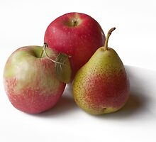 apples & pear  by Tessa Manning