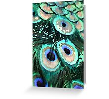 Peacock Feathers Graphic Greeting Card