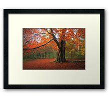 Russet Beauty Framed Print