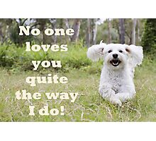No One Loves You Photographic Print