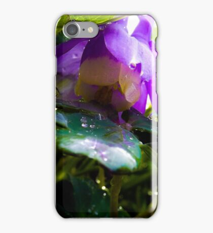 Columbine with dew drops iPhone Case/Skin