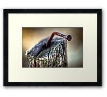Nail Framed Print