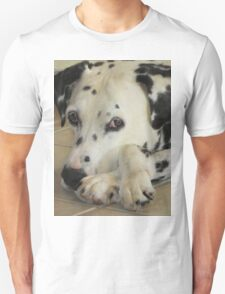 Ho Hum.  Unisex T-Shirt