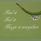 magic I by Gnangarra