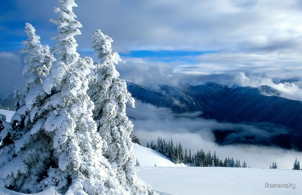 Snowy Trees and Mountains by lkamansky