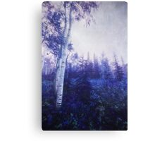 Wander trough the foggy forest Canvas Print