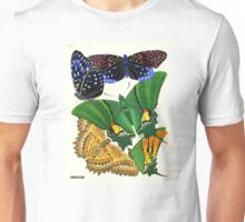 Eugene Seguy 1924 French Butterfly Print Plate 6 Unisex T-Shirt