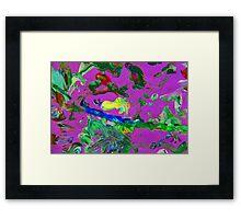 Rosellas Framed Print