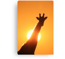 Giraffe Silhouette - Golden Sunset African Wildlife Canvas Print