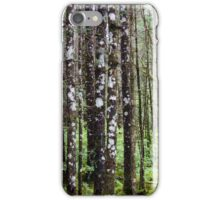 Sitka Spruce, Bartlett Cove iPhone Case/Skin