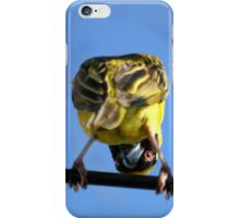From this point of view she looks more scary... Swartkeelvink (Southern Masked Weaver - Ploceus velatus) Free State, South Africa iPhone Case/Skin